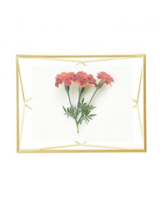 Umbra - Prisma - fotolijst - voor 10x15 - goudkleurig - 15x20cm